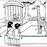 Contoh Gambar Sketsa Kebun Binatang