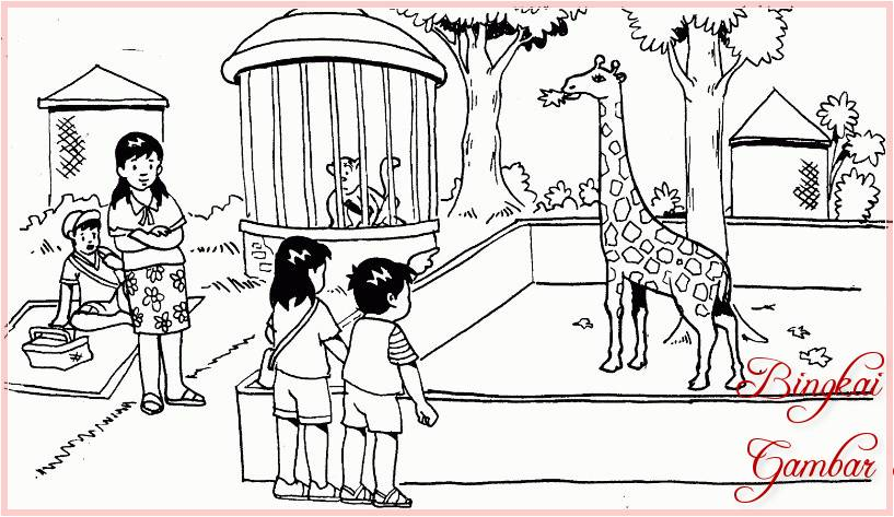 Sketsa Kebun Binatang Related Keywords Suggestions Sketsa Kebun