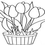 Contoh Gambar Sketsa Pot Bunga