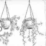 Gambar Sketsa Bunga Beserta Pot