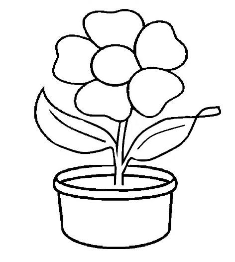 10 Gambar Sketsa Pot Bunga Terbaik Dan Cara Menggambarnya