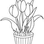 Gambar Sketsa Bunga Dan Pot Nya