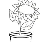 Gambar Sketsa Bunga Dengan Pot