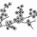 Gambar Sketsa Bunga Kecil