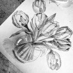 Gambar Sketsa Bunga Lili