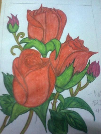 Gambar Sketsa Bunga Mawar Berwarna