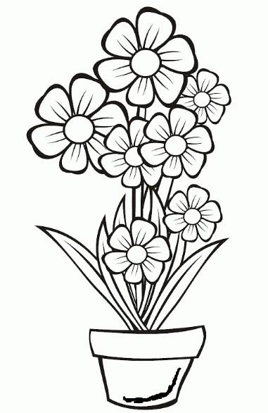 Gambar Sketsa Bunga Mawar Dalam Pot