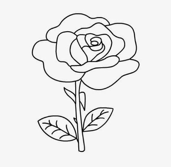 Gambar Sketsa Bunga Mawar Yang Gampang