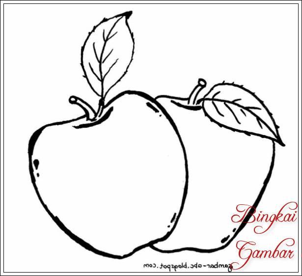 Gambar Sketsa Daun Apel