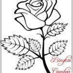 Gambar Sketsa Daun Bunga Mawar