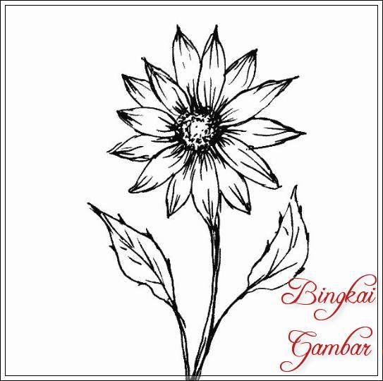 Gambar Sketsa Daun Dan Bunga