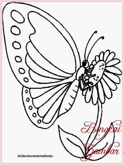 Gambar Sketsa Hewan Dan Bunga