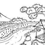 Gambar Sketsa Pegunungan Dan Sawah
