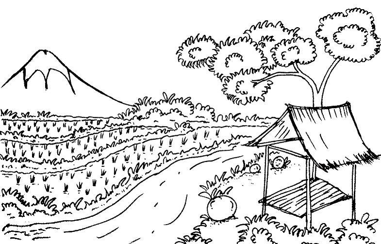 Gambar Sketsa Pegunungan Dan Sawah Bingkaigambar Com