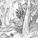 Gambar Sketsa Pemandangan Hutan