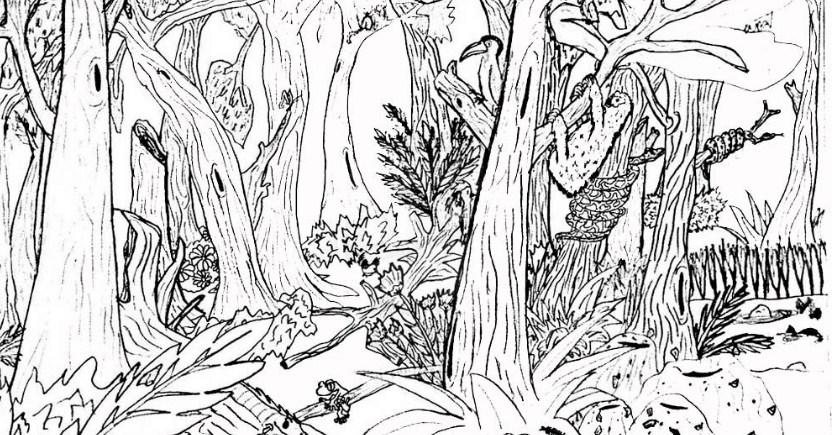 8 Gambar Sketsa Pemandangan Hutan Pohon Sungai Dan Gunung