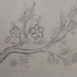 Gambar Sketsa Pohon Bunga Sakura