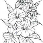 Sketsa Bunga Kamboja Hitam Putih