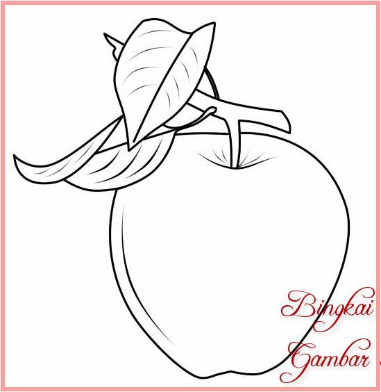 Sketsa Gambar Buah Apel