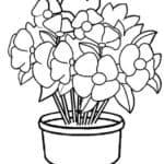 Sketsa Gambar Bunga Mawar Dalam Pot