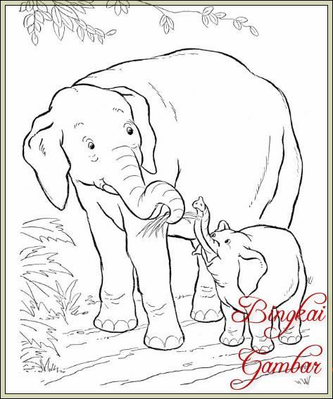 Sketsa Gambar Gajah Dan Pemandangan