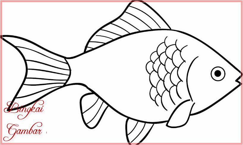 Sketsa Gambar Hewan Ikan Terbaru