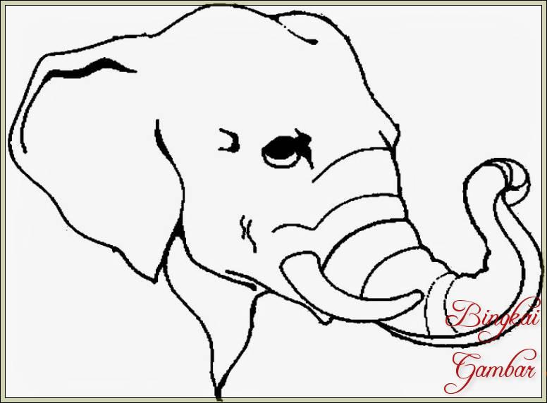 Sketsa Gambar Kepala Gajah