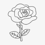 Sketsa Gambar Mawar Yang Mudah