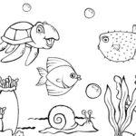 Sketsa Gambar Pemandangan Alam Bawah Laut