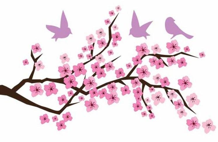 Sketsa Gambar Pemandangan Bunga Sakura Di Jepang
