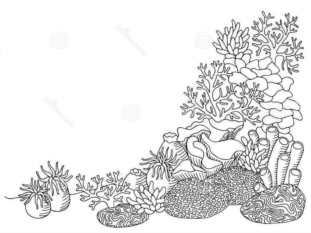 Sketsa Gambar Pemandangan Dasar Laut