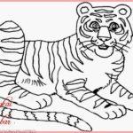 Sketsa Kartun Harimau
