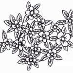Sketsa Lukisan Bunga Melati