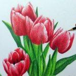 Sketsa Lukisan Gambar Bunga Tulip