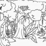 Sketsa Pemandangan Alam Hutan