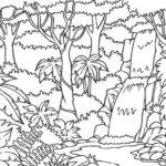 Sketsa Pemandangan Di Hutan