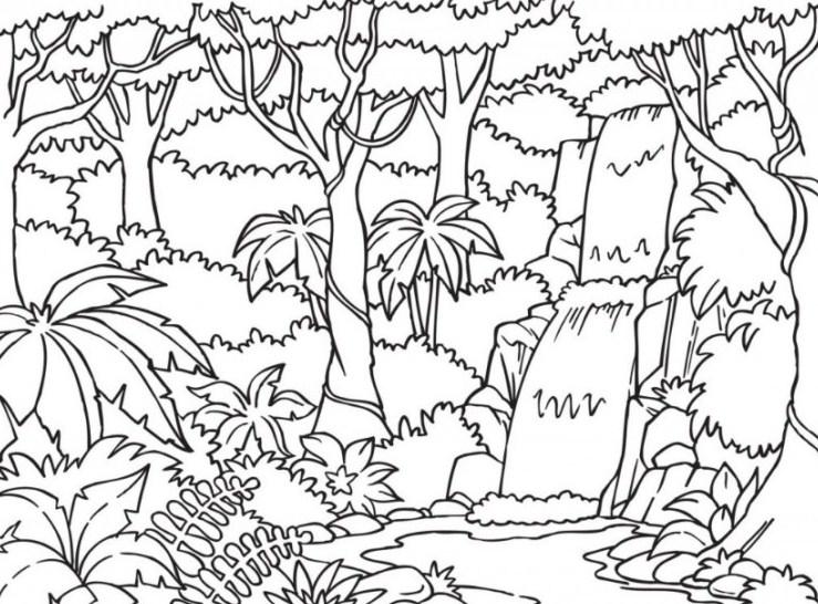 Sketsa Pemandangan Hutan