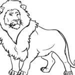 Contoh Gambar Sketsa Singa