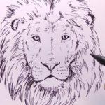 Gambar Sketsa Kepala Singa