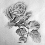 Contoh Gambar Sketsa Lukisan Bunga