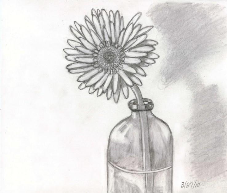 Sketsa Lukisan Bunga Matahari