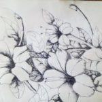 Sketsa Lukisan Bunga Sakura