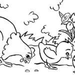 Sketsa Gambar Ayam Dan Bebek