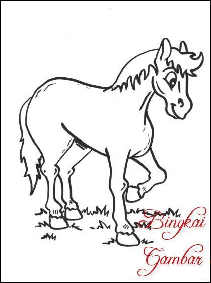 Gambar Sketsa Kuda Dan Keledai