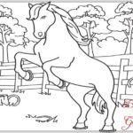 Gambar Sketsa Kuda Jingkrak