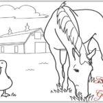 Gambar Sketsa Kuda Makan Rumput