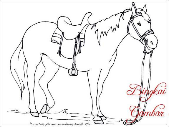 Gambar Sketsa Kuda Membawa Barang