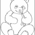 Gambar Sketsa Panda