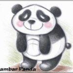 Sketsa Gambar Binatang Panda