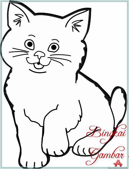 Contoh Sketsa Hewan Kucing
